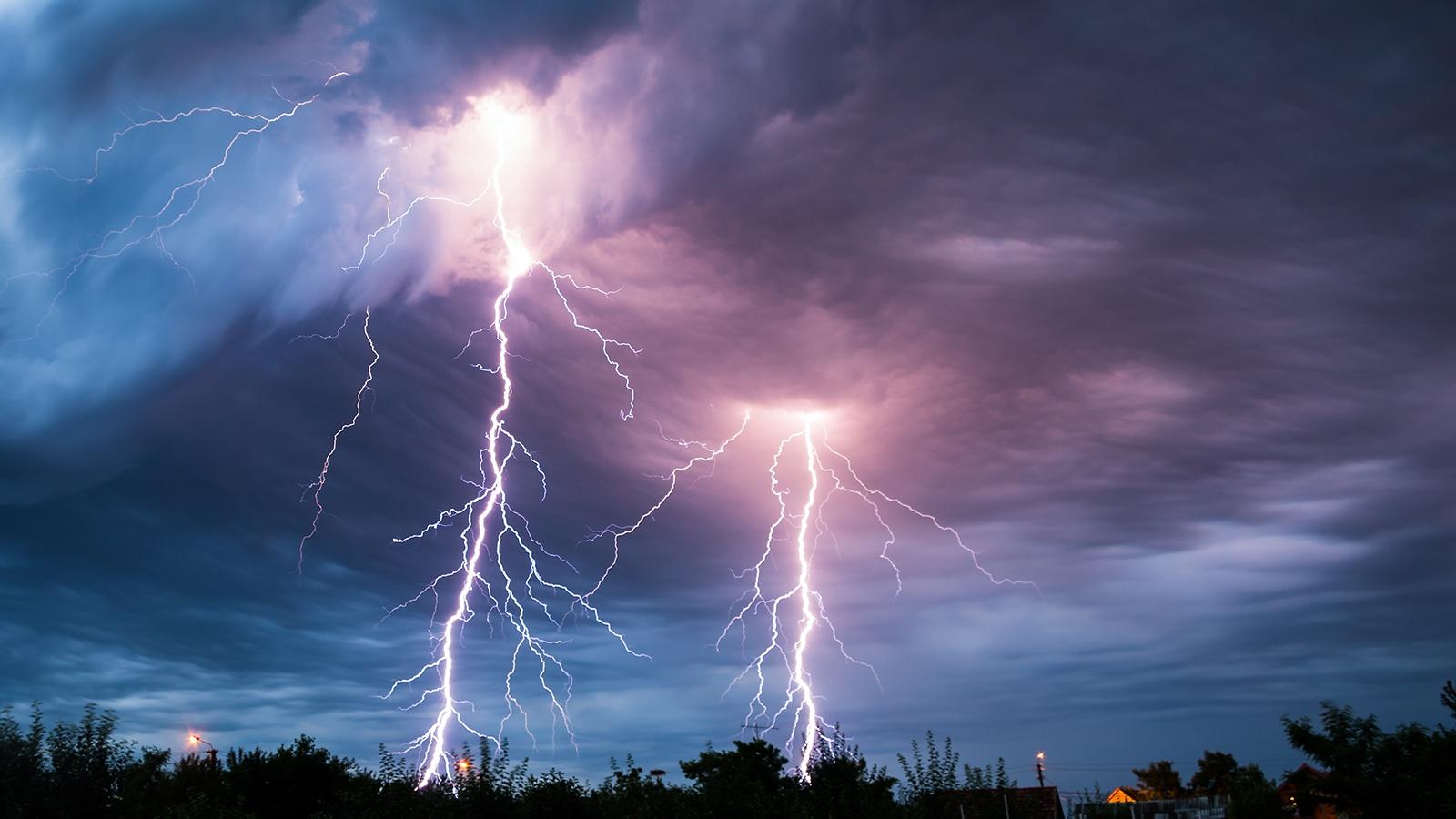 lightning-trees-National-geographic.jpg